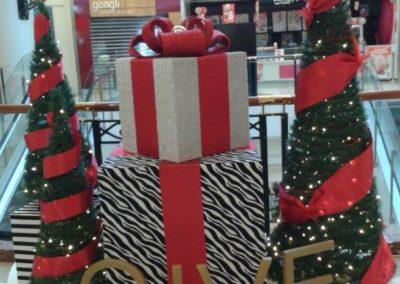 Meridian mall 2014 (15)