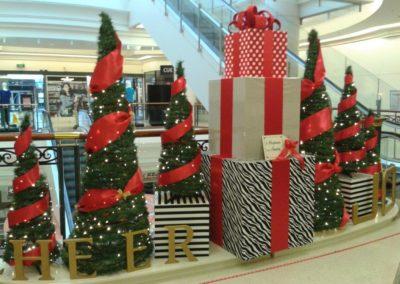 Meridian mall 2014 (6)